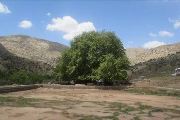 تصاویر روستاي کرخنگان (چنار) و غار بابا زاهد