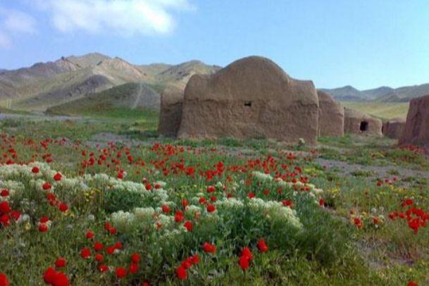 تصویر منطقه حفاظت شده باغ کشمیر