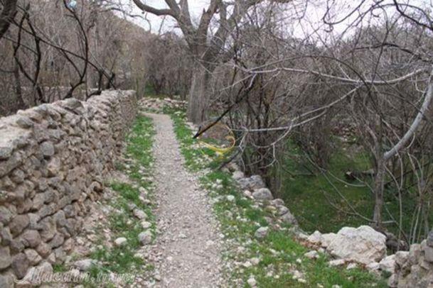 تصاویر روستای شادکام و قطروم بافق و چشمه ی شادکام