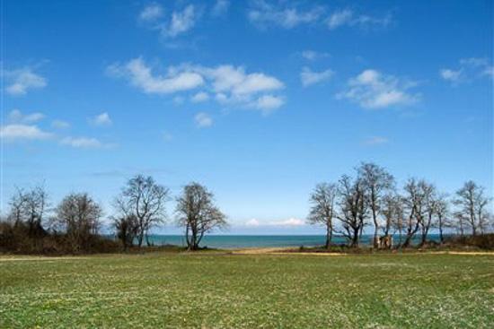 عکس دریاچه طالب آباد