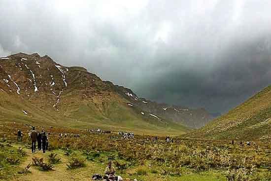 دشت لاله های واژگان گلستان کوه خوانسار