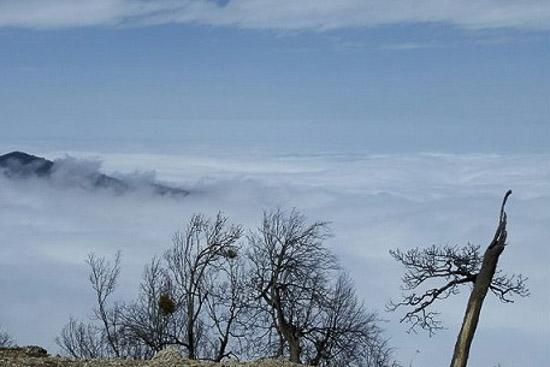 قله ی قلعه ماران