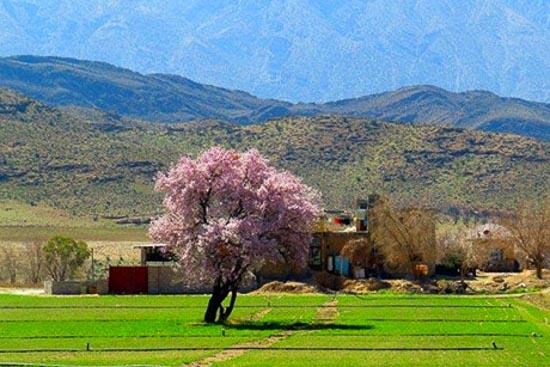 روستای هکان فارس