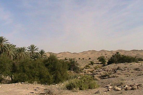 منطقه حفاظت شده هرمود لارستان فارس