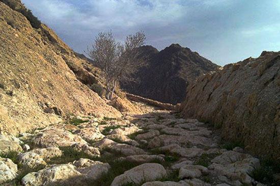 جاده ادویه فارس