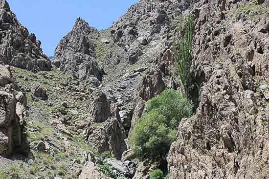 کوهستان کرکس