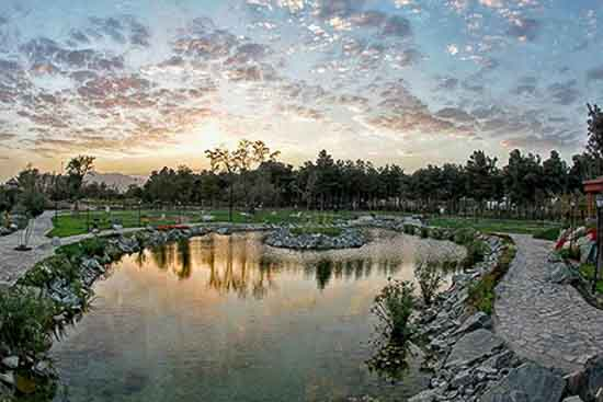تصویر باغ گیاهشناسی مشهد