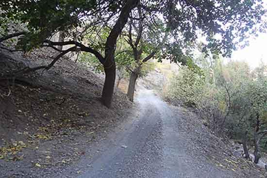 تصویر روستای گرینه