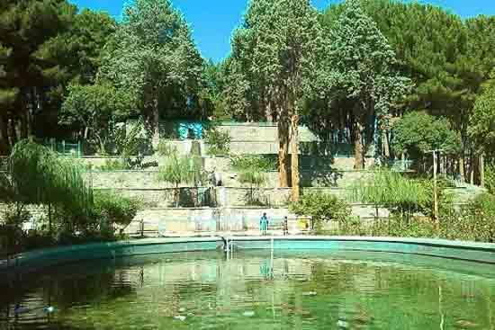 تصویر پارک جنگلی سید مرتضی