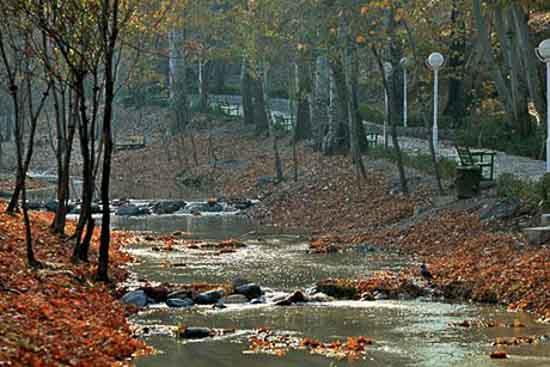 تصویر پارک وکیل آباد