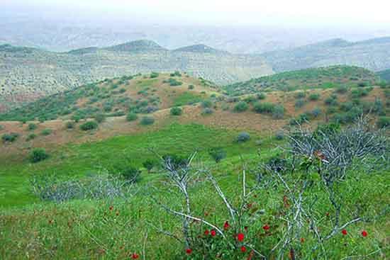 تصویر روستای چهچهه