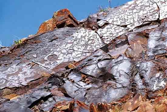 تصویر سنگ نگاره شتر سنگ