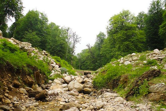 منطقه حفاظت شده سیاهرود