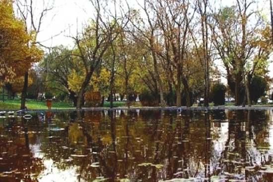 پارک مردم