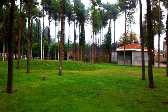 پارک ولیعصر فیروزآباد فارس