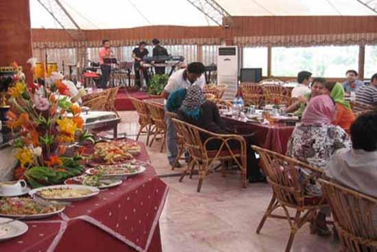 رستوران شاندیز آبشار غذا